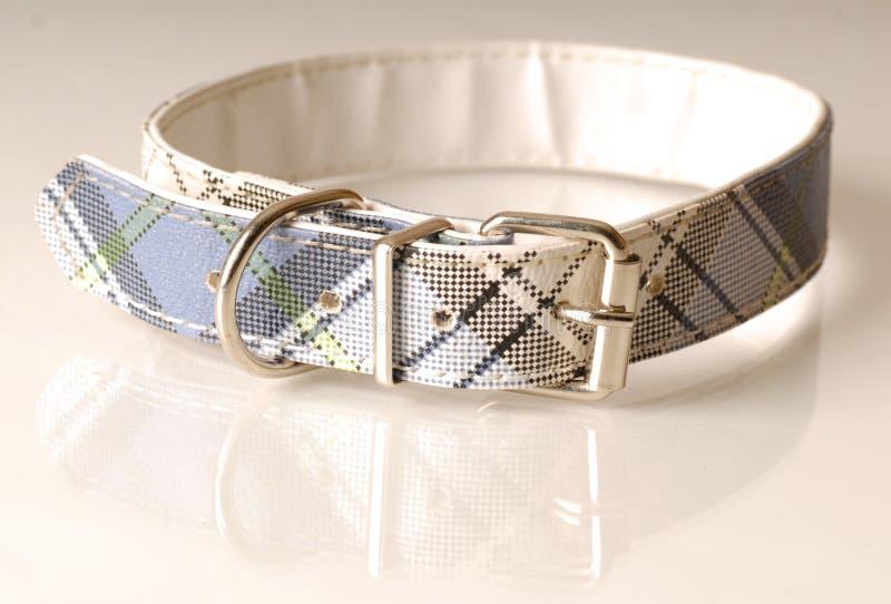 De halsband van de plaid royalty-vrije stock afbeelding