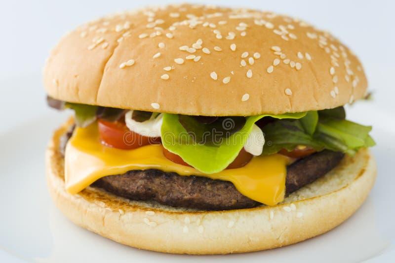 De hamburger van de kaas stock foto