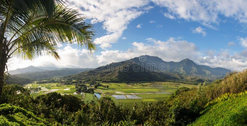 De Hanaleivallei van Princeville overziet Kauai stock fotografie