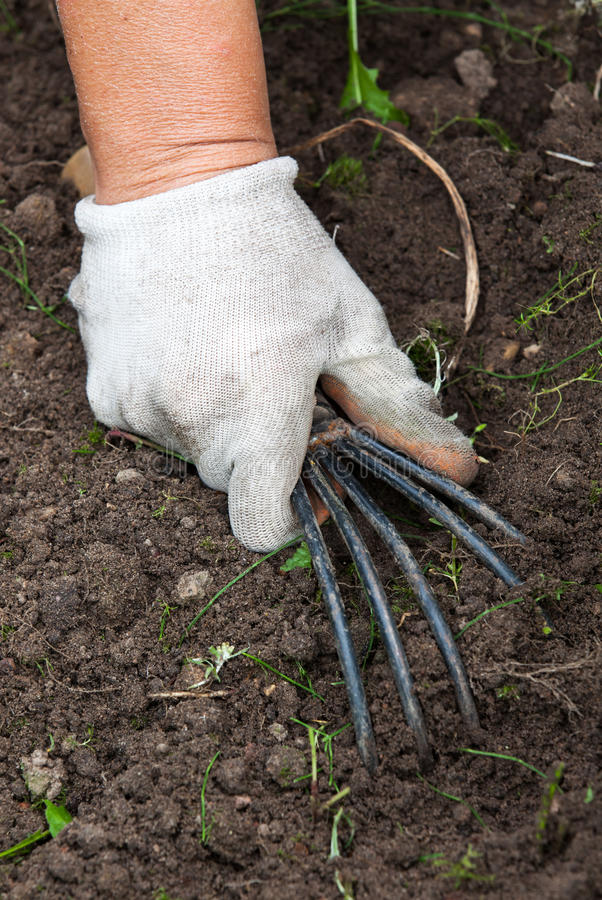 De hand die het het tuinieren hulpmiddel houden stock afbeeldingen