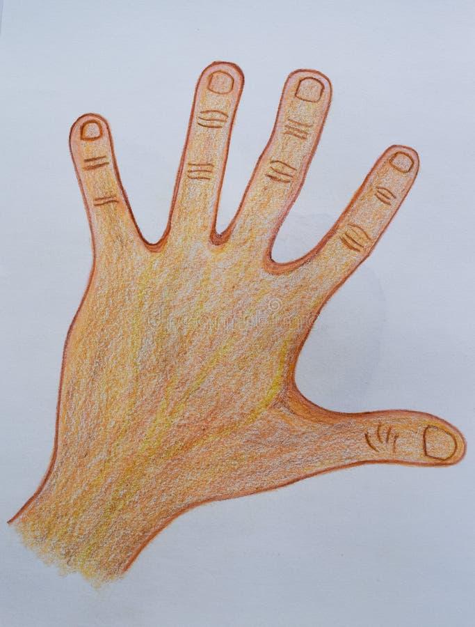 De hand die op Witboekachtergrond trekken, kijkt mooi stock foto's