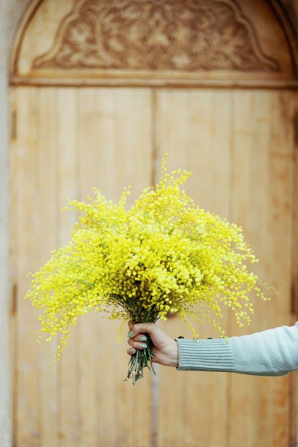 De hand die van de close-upvrouw een boeket van verse mimosa, achtergrond, stemming houden royalty-vrije stock foto's