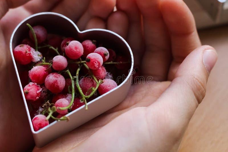De hand die van het meisje traditionele feestelijke koekjes maken Het bakken met liefdeconcept Moederdag, de Dag van Vrouwen, de  royalty-vrije stock foto's