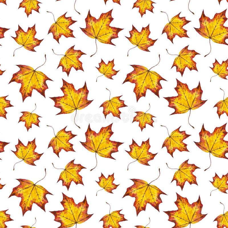 De hand geschilderde achtergrond van de waterverfherfst van dalende bladesdoorn vector illustratie