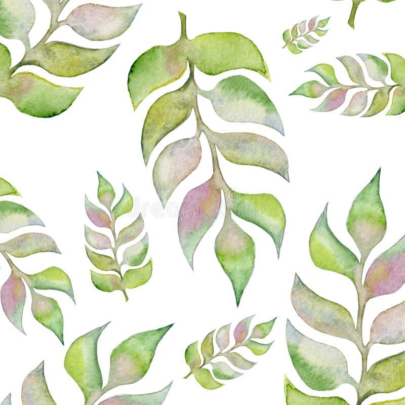 De hand geschilderde installaties van de waterkleur Geïsoleerde bloemenontwerpelementen royalty-vrije illustratie