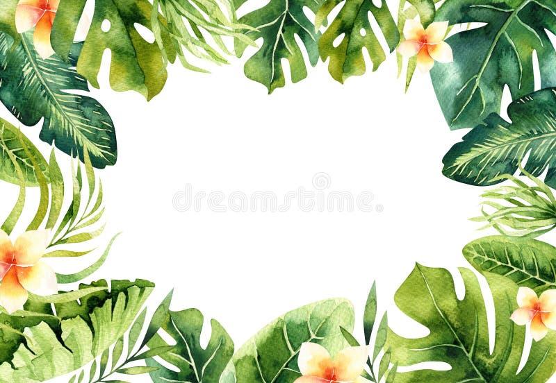 De hand getrokken achtergrond van waterverf tropische installaties Exotische palmbladen, wildernisboom, de tropische borany eleme stock illustratie