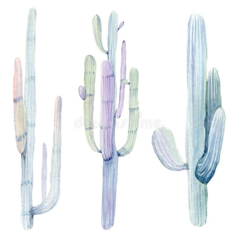 De hand getrokken cactussen van waterverfsaguaro royalty-vrije illustratie