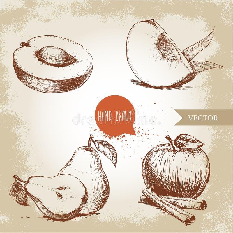 De hand getrokken geplaatste vruchten van de schetsstijl De abrikoos, perzikkwart met doorbladert, gehele peer en half, appel met vector illustratie