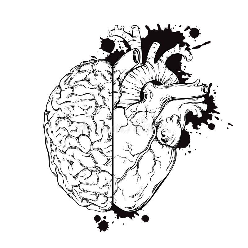 De hand getrokken menselijke hersenen en het hart van de lijnkunst halfs Het ontwerp van de de inkttatoegering van de Grungeschet stock illustratie