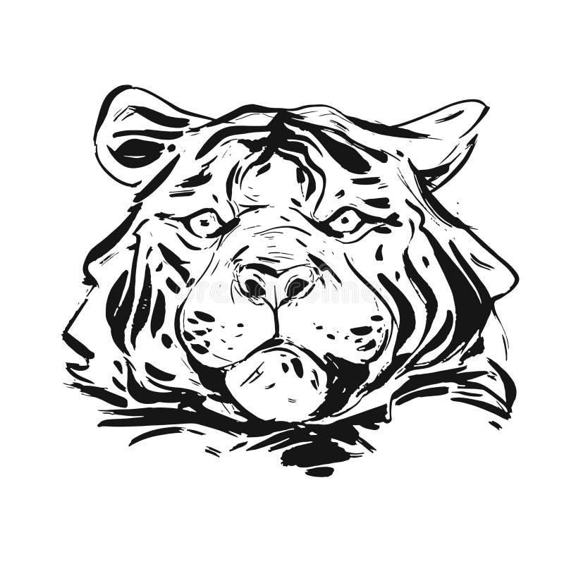 De hand getrokken vector abstracte hoofddieillustratie van de inkt grafische ruwe tijger op witte achtergrond wordt geïsoleerd Aa stock illustratie