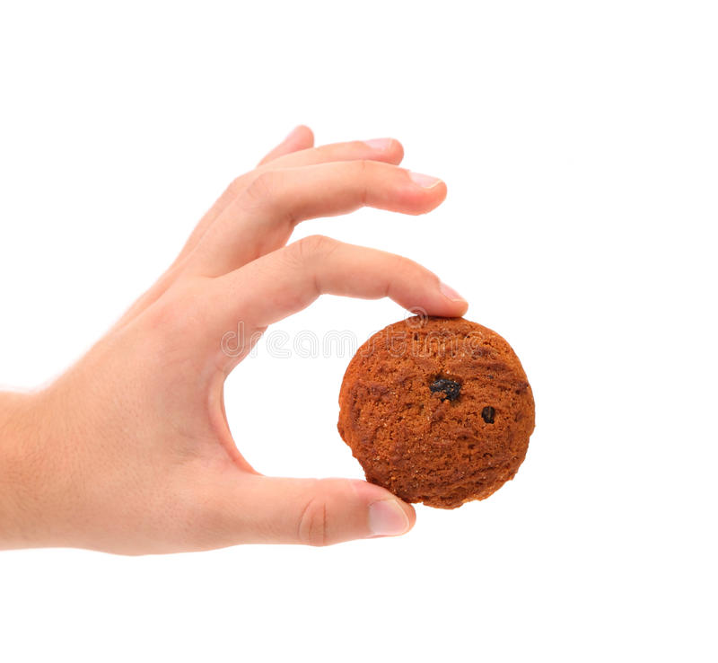 De hand houdt het koekje van de havermeelrozijn. stock afbeeldingen