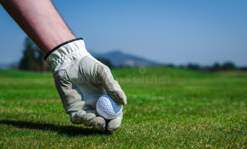 De hand met een handschoen plaatst een T-stuk met golfbal in de grond stock afbeeldingen