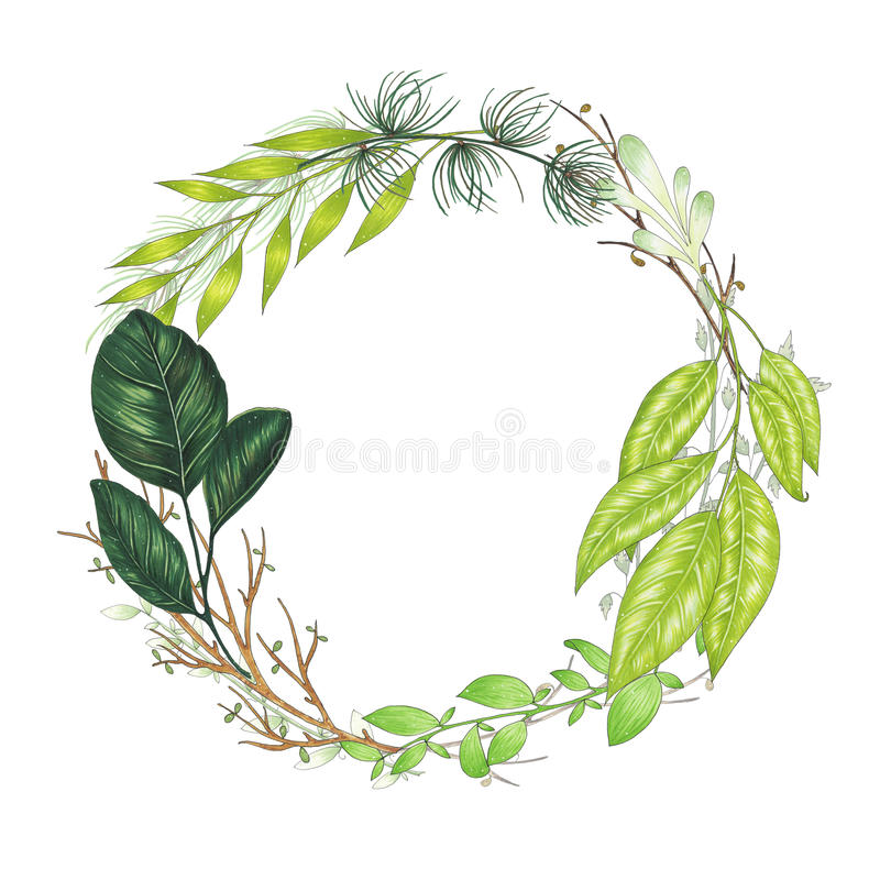 De hand met tellers bloemenkroon wordt geschilderd met takje, tak en groene samenvatting die gaat weg stock illustratie