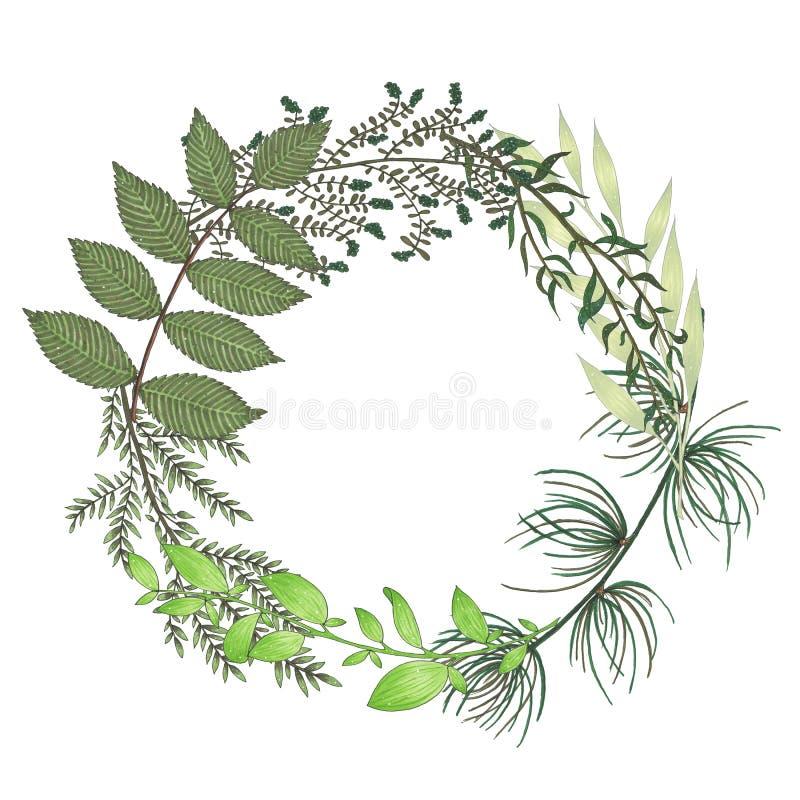 De hand met tellers bloemenkroon wordt geschilderd met takje, tak en groene samenvatting die gaat weg royalty-vrije illustratie