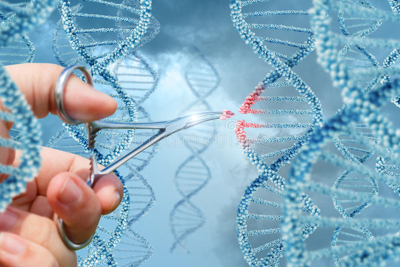 De hand neemt een molecule in DNA op stock foto's