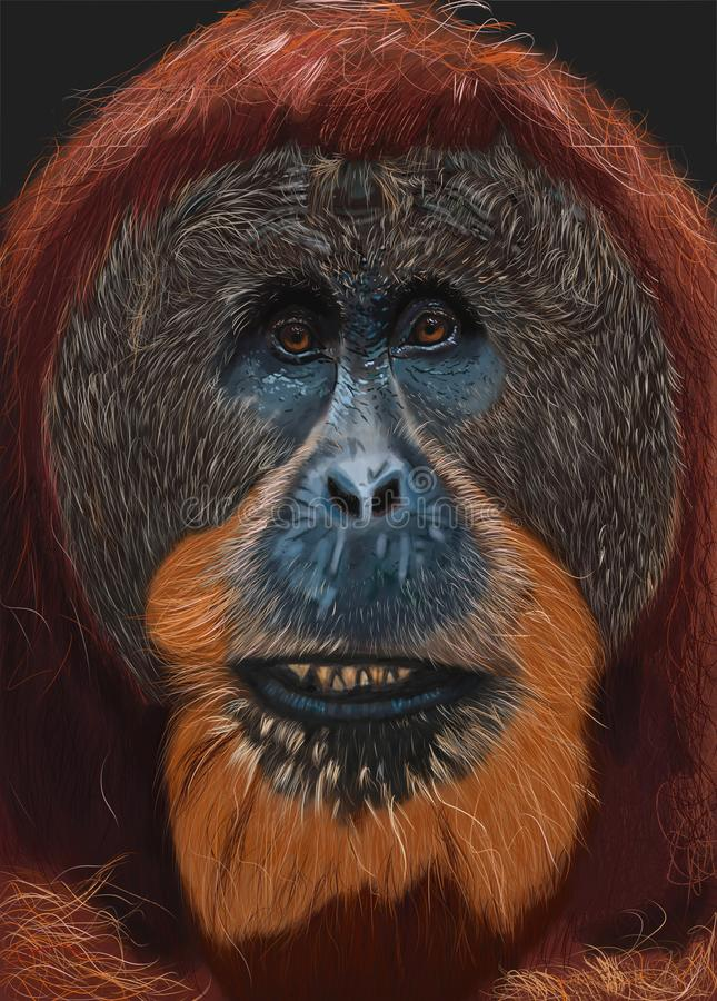 De hand schilderde Digitaal Portret van een Orangoetan royalty-vrije stock fotografie