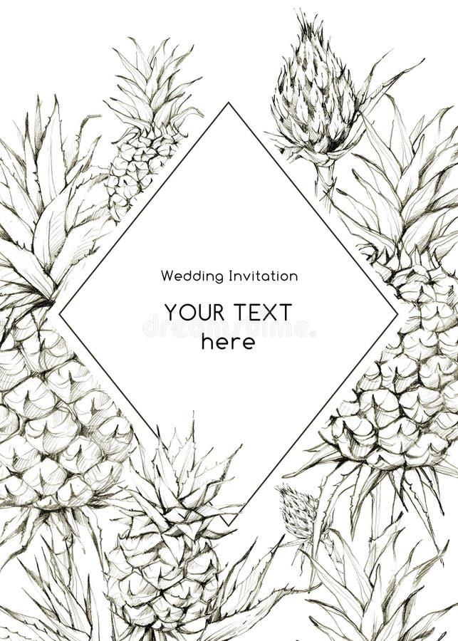 De hand schilderde geometrisch kader met ananassen en bladeren Tropische grafische illustratie in beige schaduwen Huwelijk vector illustratie