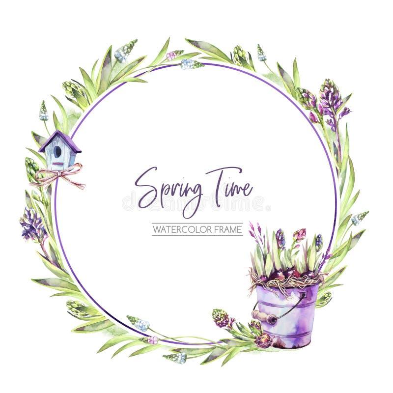 De hand schilderde om kader met Hyacintenbloemen, bladeren, emmer en vogelhuis Illustratie van de de lente de rustieke waterverf  vector illustratie