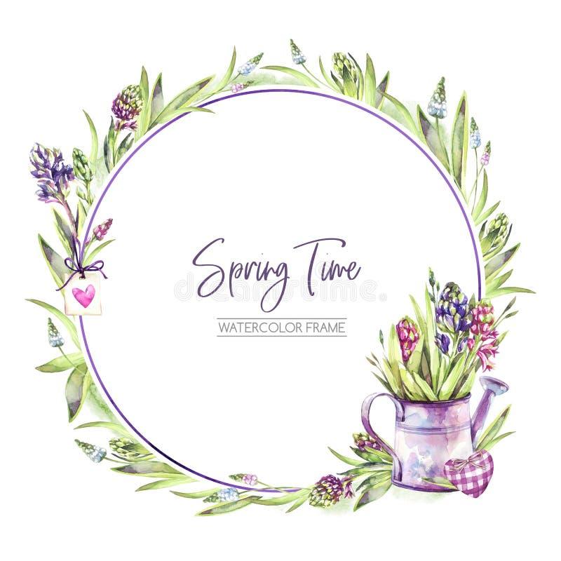De hand schilderde om kader met Hyacintenbloemen, bladeren en gieter Illustratie van de de lente de rustieke waterverf binnen stock illustratie