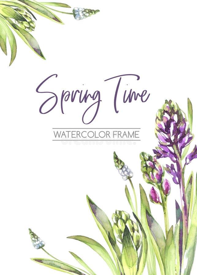 De hand schilderde verticaal kader met Hyacintenbloemen en bladeren De illustratie van de de lentewaterverf in violette schaduwen royalty-vrije illustratie