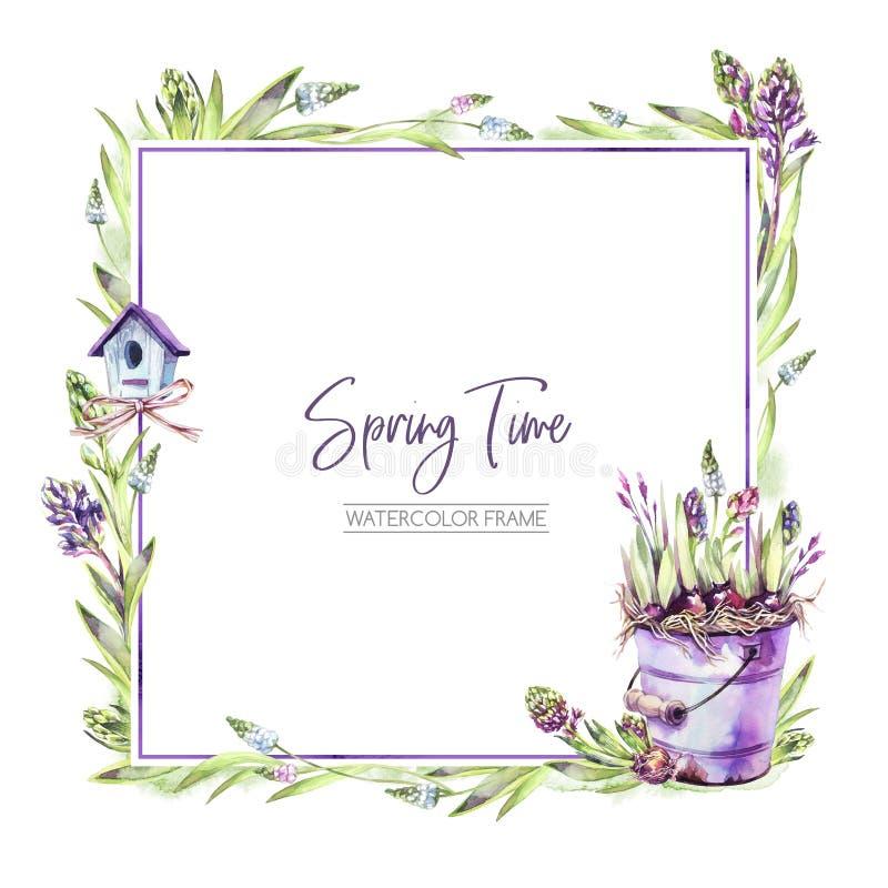 De hand schilderde vierkant kader met Hyacintenbloemen, bladeren, emmer en vogelhuis Illustratie van de de lente de rustieke wate stock illustratie