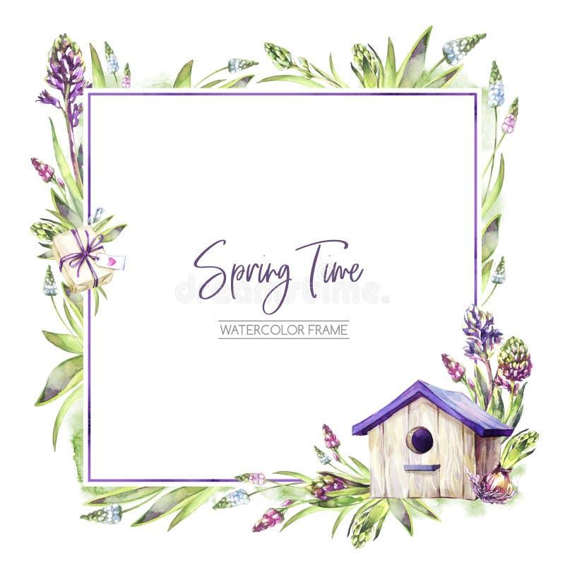 De hand schilderde vierkant kader met Hyacintenbloemen, bladeren en vogelhuis Illustratie van de de lente de rustieke waterverf i vector illustratie