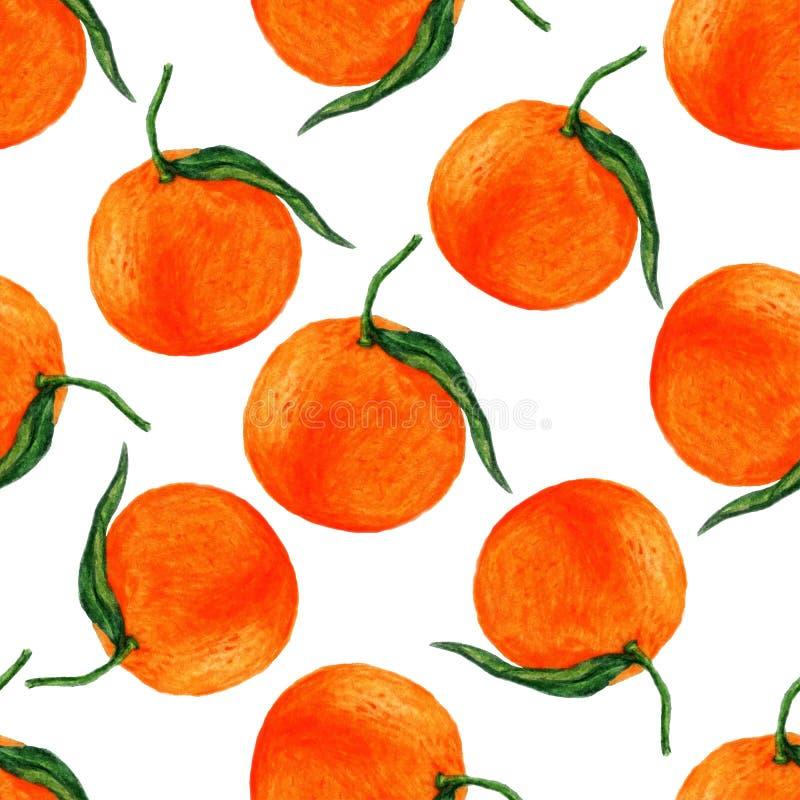 De hand trekt oranje naadloos patroon op witte achtergrond, het behang van de fruitwaterverf vector illustratie