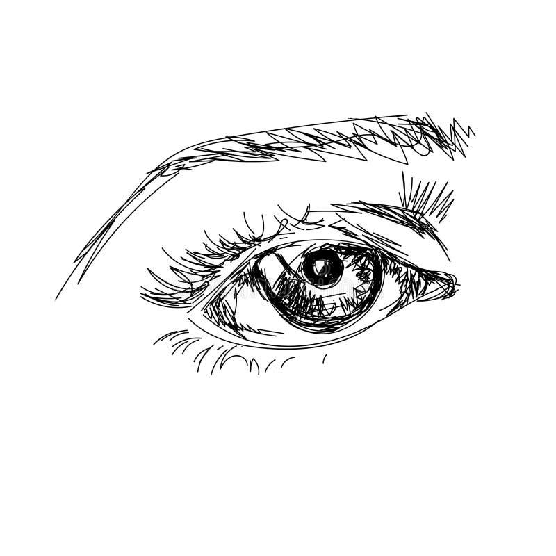 De hand trekt scetchy groot oog met brow op de witte achtergrond stock afbeelding