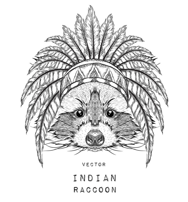 De hand trekt wasbeer in een hoed van de V.S. Vector illustratie vector illustratie
