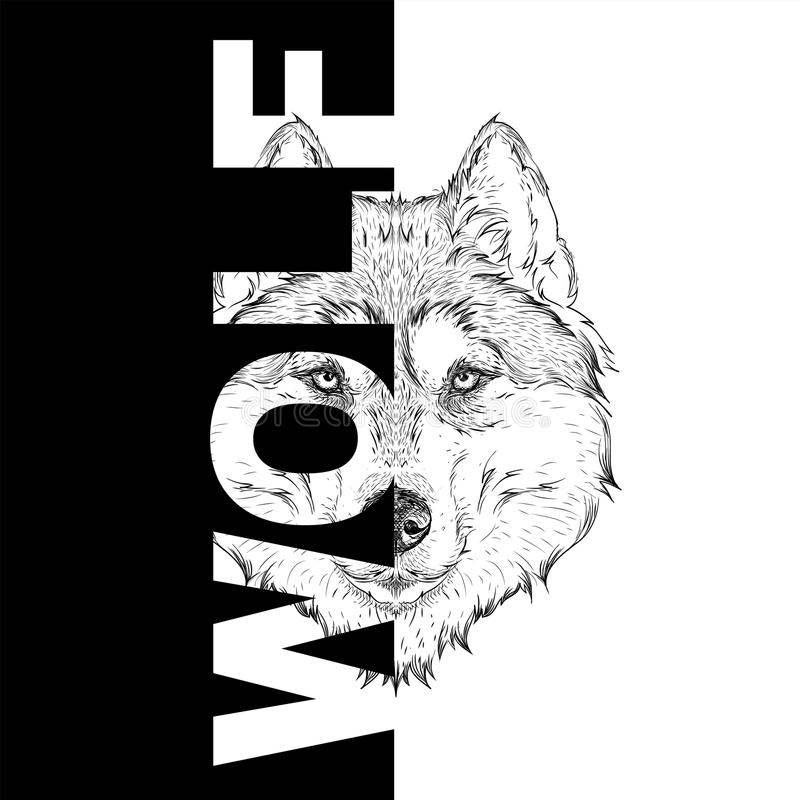 De hand trekt wolfsportret Het kan voor ontwerp van zak, prentbriefkaar en affiche worden gebruikt Vector illustratie vector illustratie
