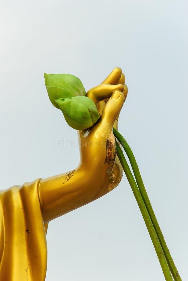 De hand van Boedha en de lotusbloem royalty-vrije stock foto's