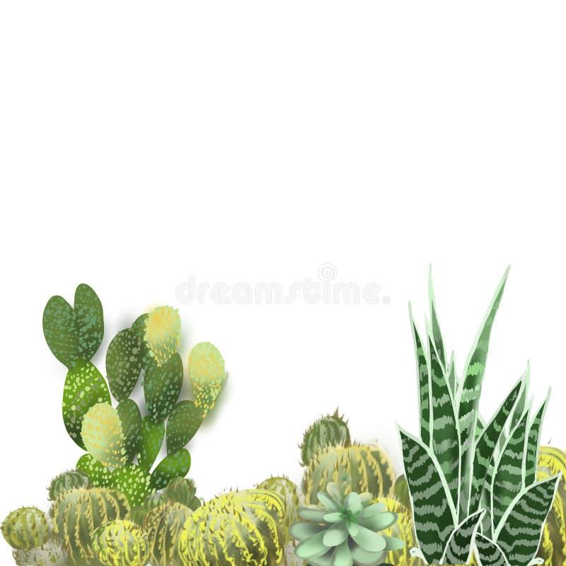 De hand van de cactustuin schilderde reeks die installaties in tuin, met het echte kijken arrangemnt voor achtergrond of kunstgeb stock foto