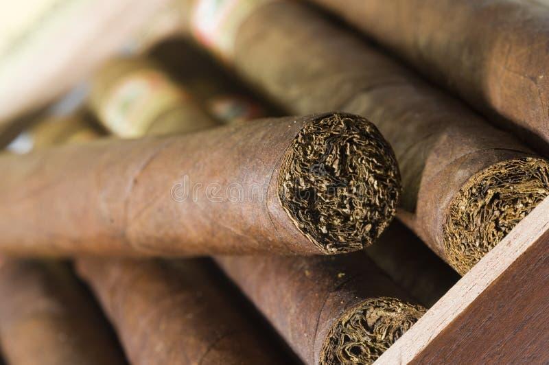De hand van de kwaliteit - gemaakte sigaren van Nicaragua stock foto