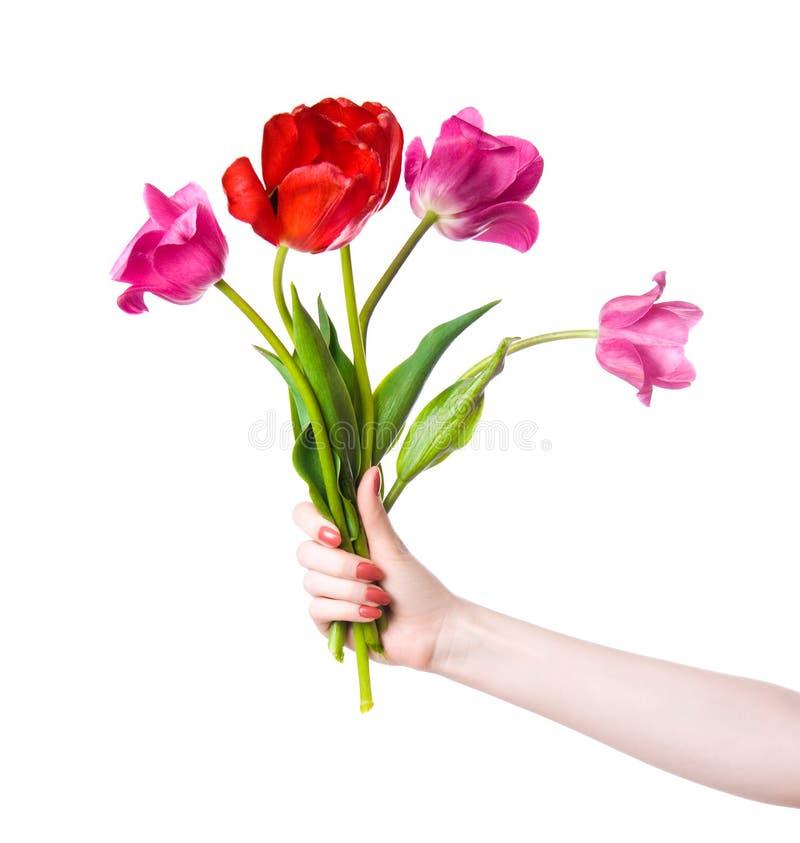 De hand van de vrouw met bloemen royalty-vrije stock fotografie