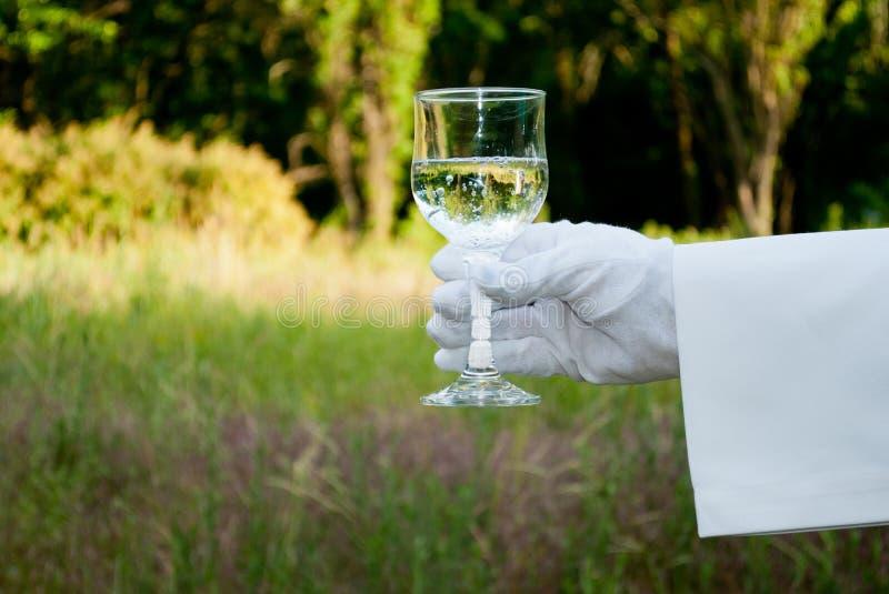 De hand van een kelner in een witte handschoen houdt een glas in de aard royalty-vrije stock afbeeldingen