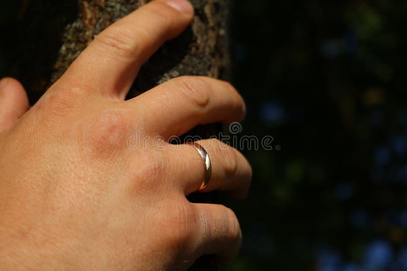 De Hand van een mens stock afbeelding