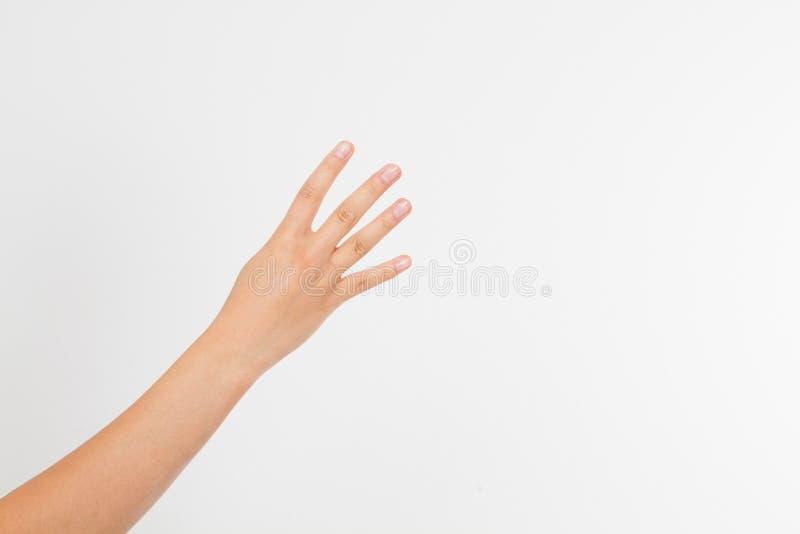 de hand van de meisjesvrouw ` s toont vier vingers Gebaar Menselijke hand Spot omhoog De ruimte van het exemplaar malplaatje spat royalty-vrije stock foto's