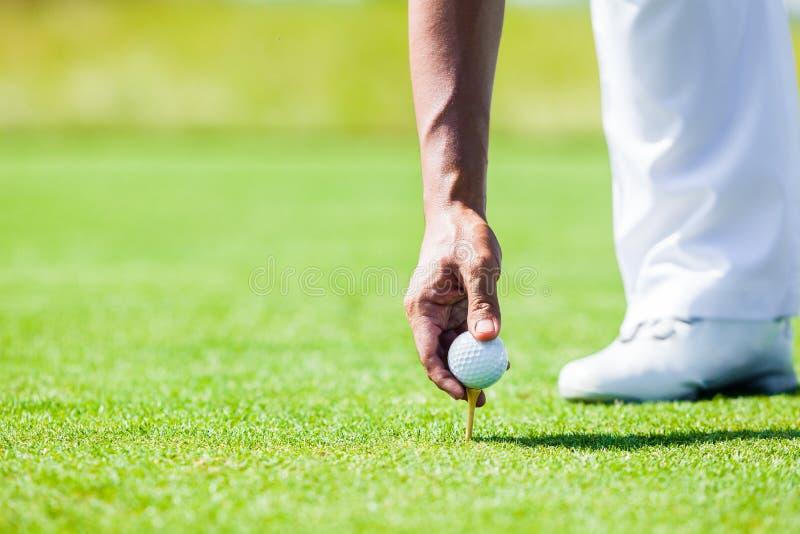 De hand van Professionele Golfspeler onderwijst hoe te Teed omhoog Golfbal royalty-vrije stock foto