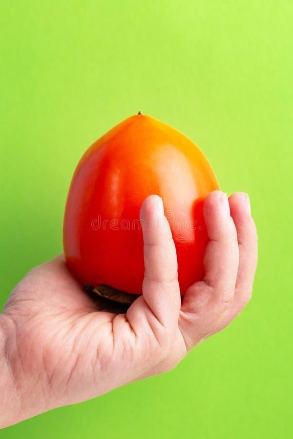 De hand van de rijpe vrouw van het dadelpruimfruit op heldergroene achtergrond royalty-vrije stock afbeelding