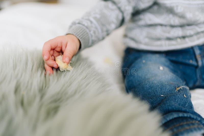 De hand van weinig peuterjongen met een snack stock fotografie