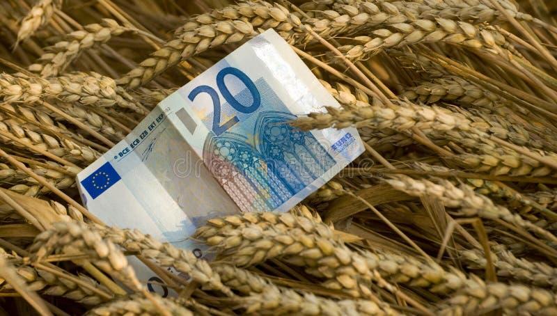 De handelgeld van de oogst stock foto