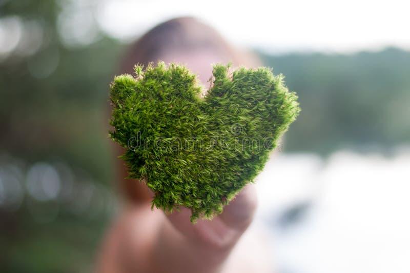 De handen die de groene hart gestalte gegeven aard van de boomliefde sparen de wereld houden helen het wereld milieubehoud royalty-vrije stock fotografie