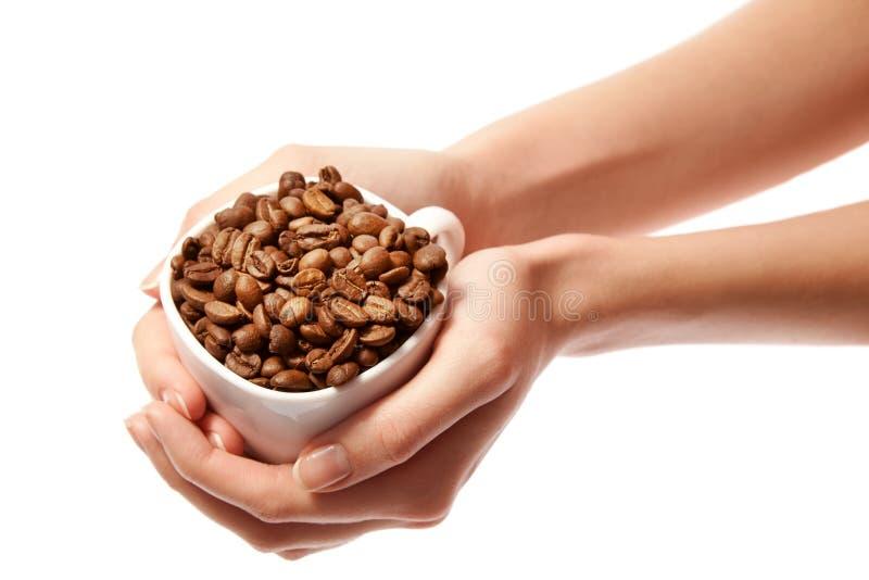 De handen die van de vrouw koffiebonen in geïsoleerdew kop houden royalty-vrije stock afbeelding