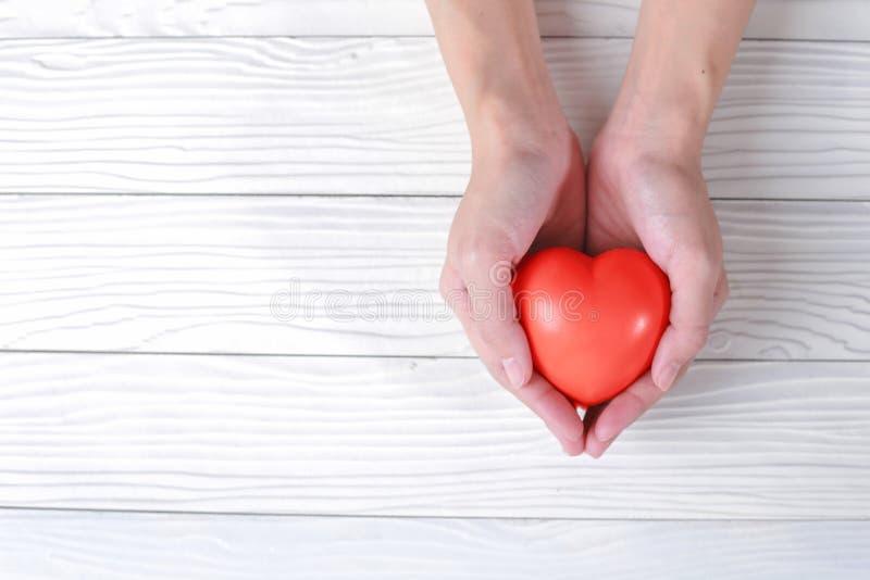 De handen houdt een rood hart Mooie witte achtergrond valentijnskaart D stock foto