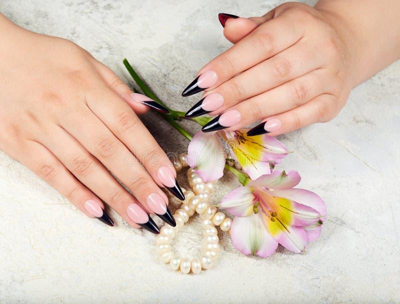 De handen met het lange kunstmatige Frans manicured spijkers en leliebloemen stock fotografie