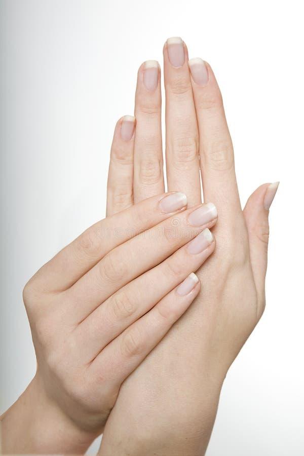 De Handen van de jonge Vrouw stock foto