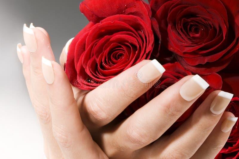 De handen van de vrouw met rode rozen stock foto