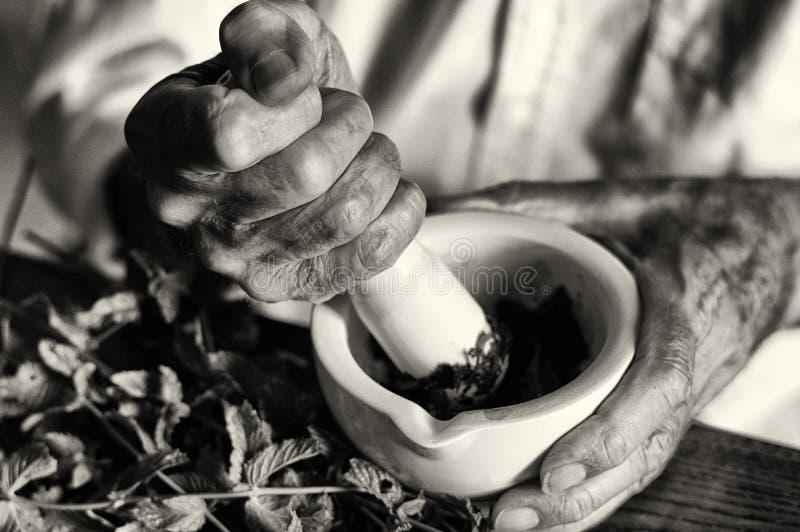 De handen van een kruidkundige die een nieuwe formulering voorbereiden royalty-vrije stock afbeelding