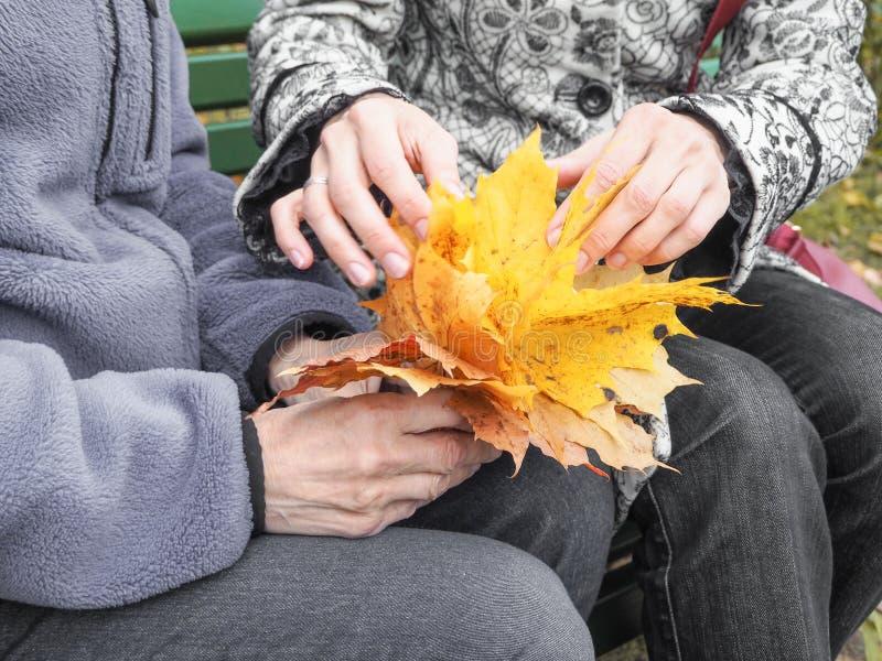 De handen van de gepensioneerde Het helpen van handen, zorg voor het bejaarde concept stock foto's