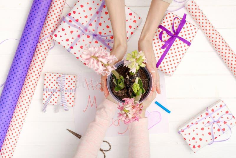 De handen van de moeder en van het meisje met bloem royalty-vrije stock foto